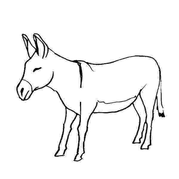 donkey pictures to colour dnkey free colouring pages to donkey pictures colour