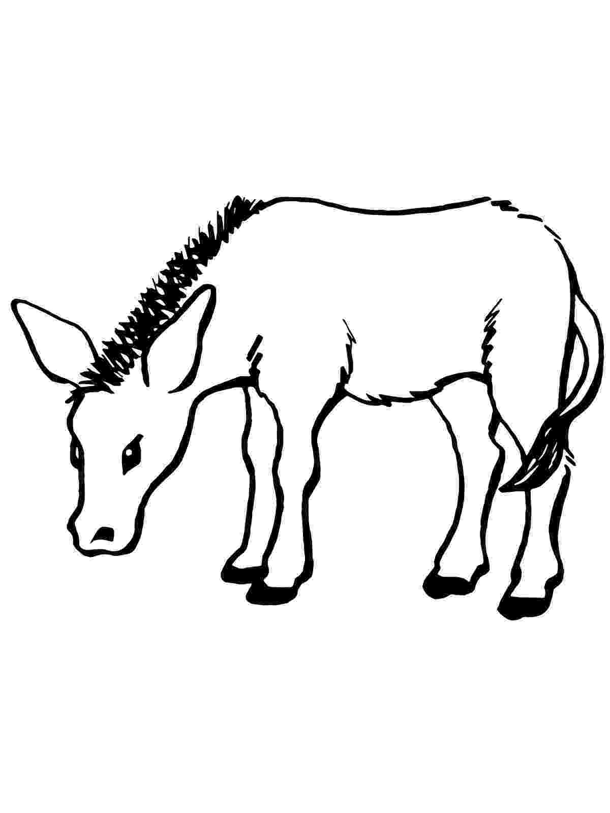 donkey pictures to colour free printable donkey coloring pages for kids colour donkey to pictures