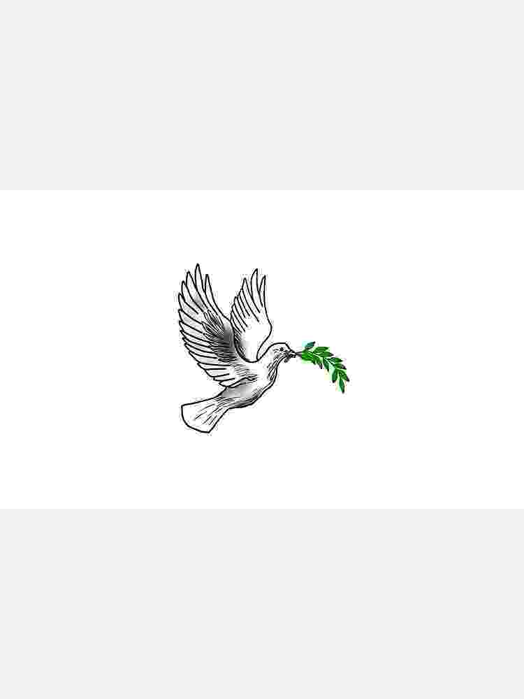 dove holding olive branch dove with olive branch illustrated white dove holding an branch dove olive holding