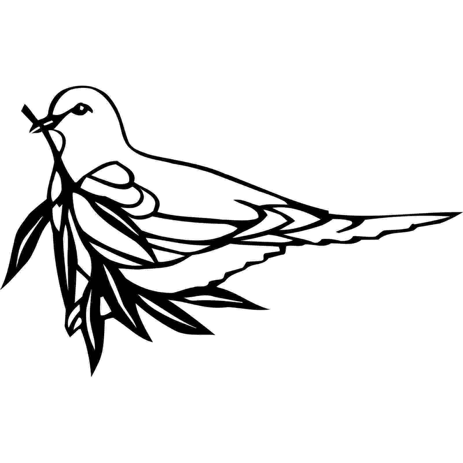 dove holding olive branch sign of peace setting the crease holding branch olive dove