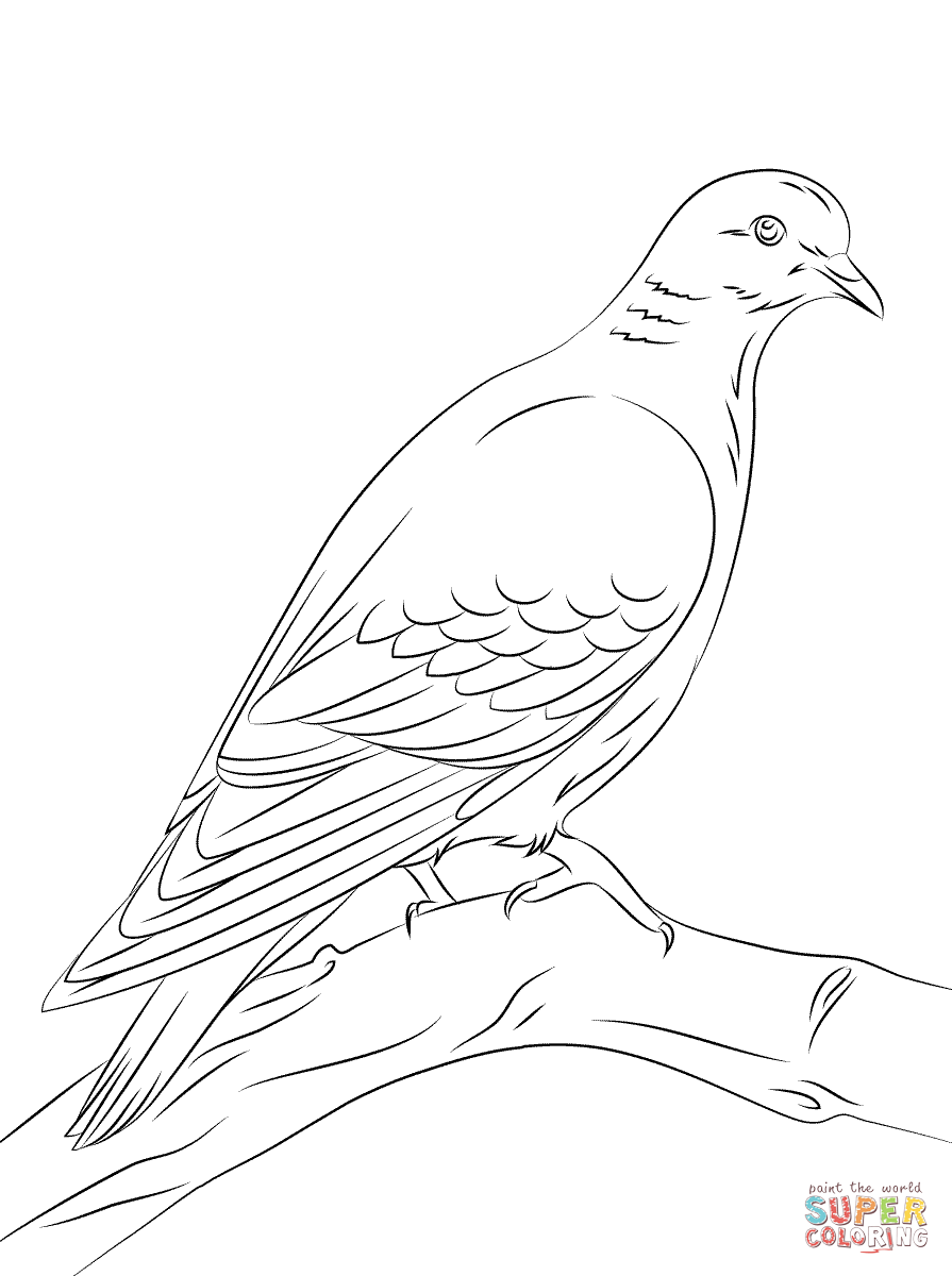 doves coloring pages dove coloring page dove free printable coloring pages pages coloring doves