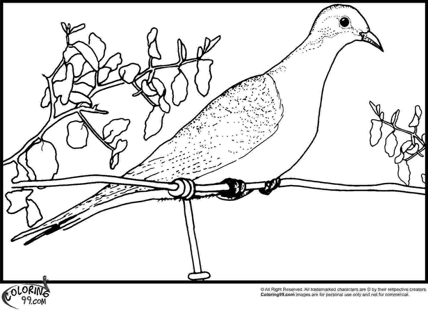 doves coloring pages dove of peace coloring pages to download and print for free coloring doves pages