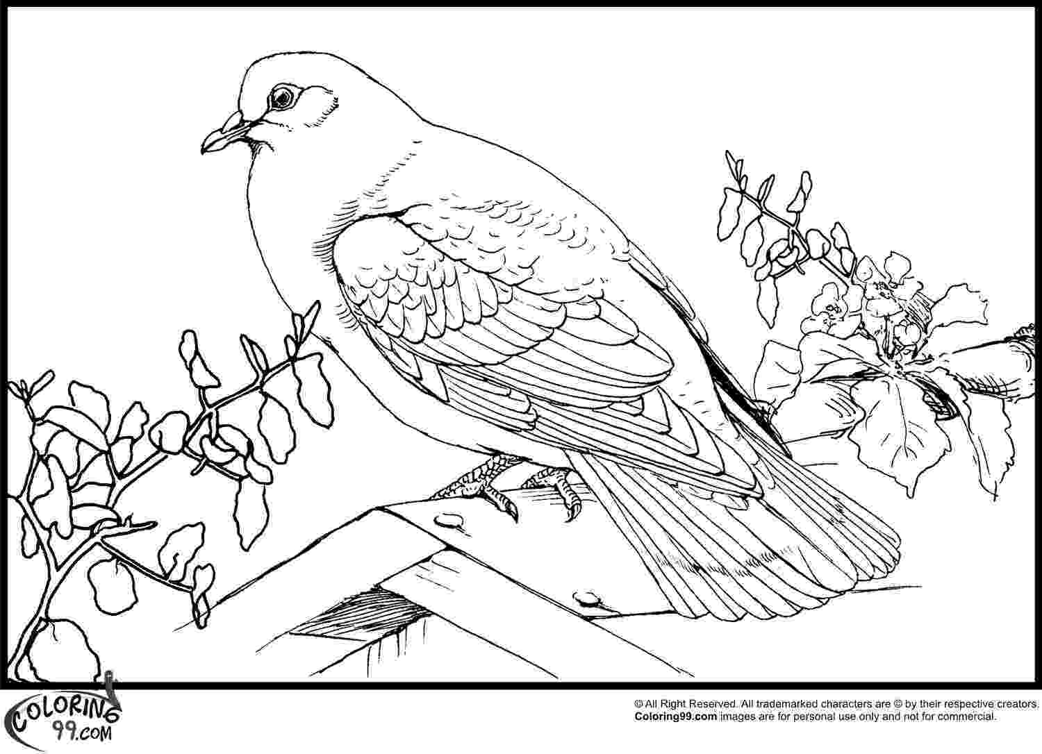 doves coloring pages love doves coloring pages hellokidscom pages coloring doves