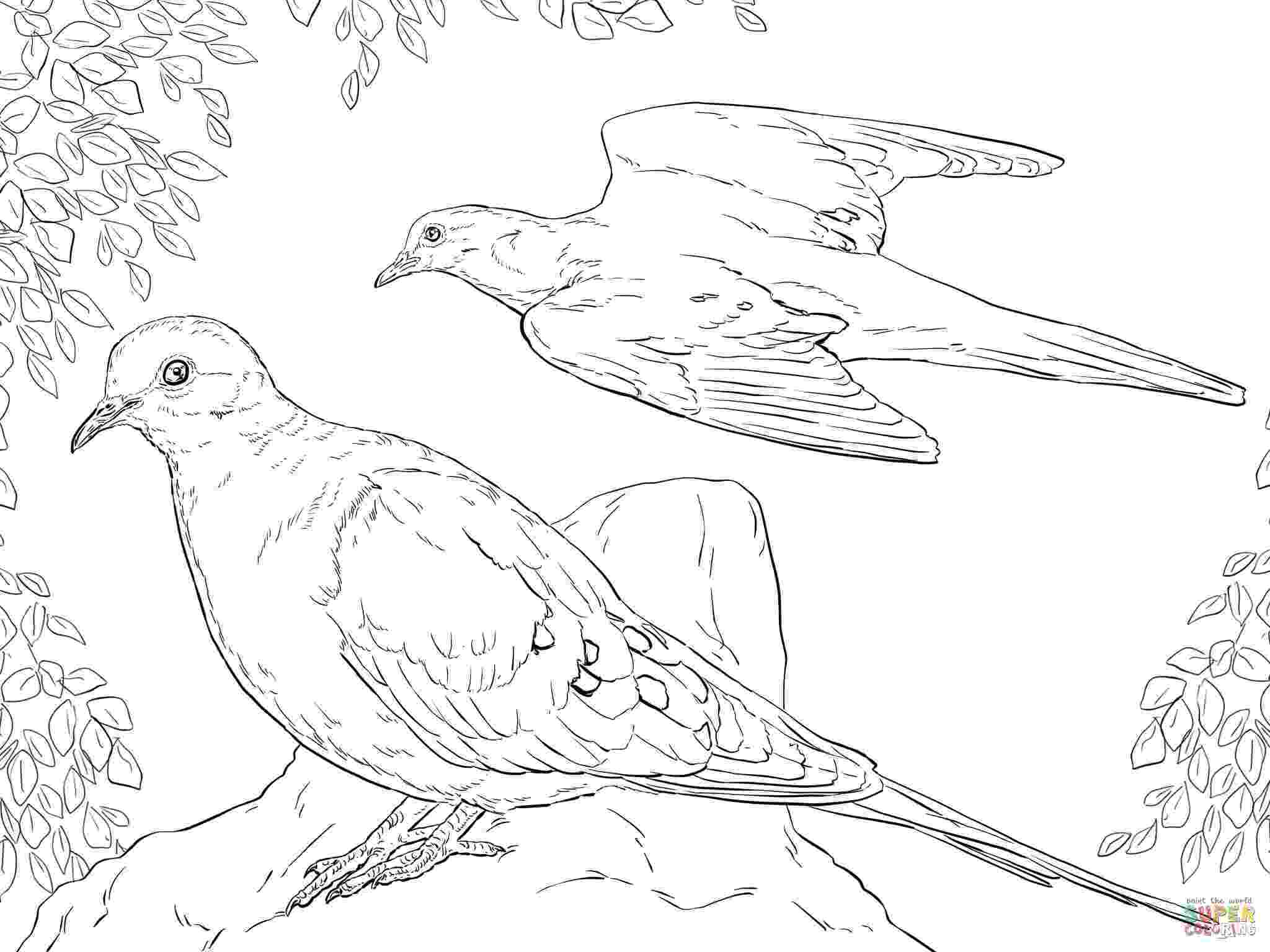 doves coloring pages peace dove coloring page at getcoloringscom free coloring pages doves