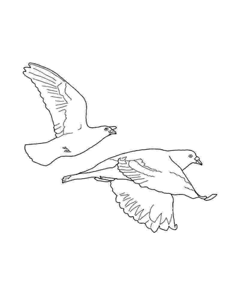 doves coloring pages peace dove coloring page coloring pages printables coloring pages doves