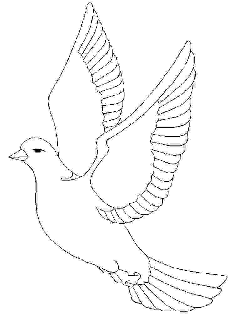 doves coloring pages white dove coloring page coloring home pages coloring doves