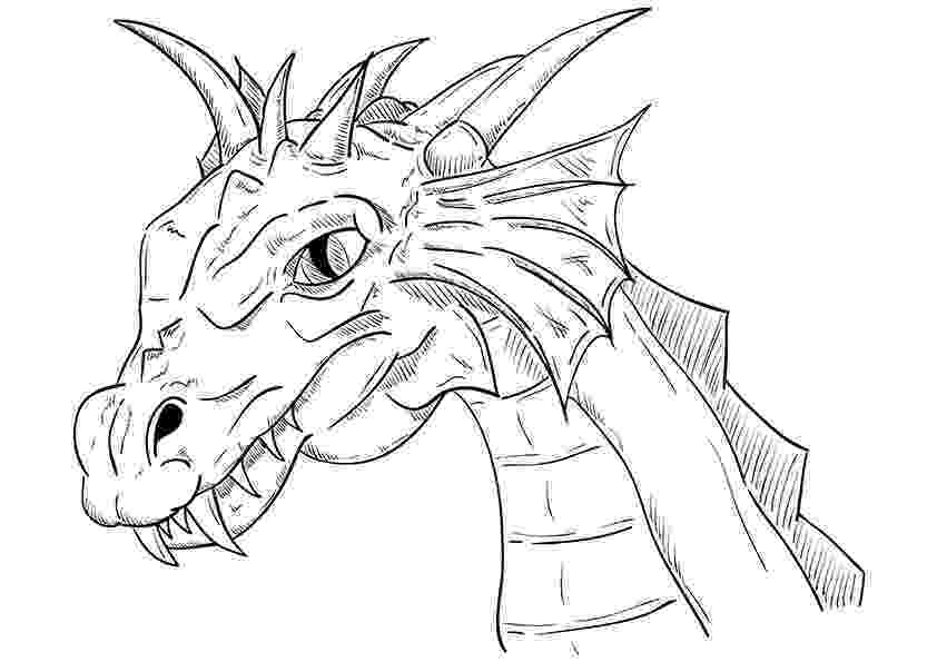 dragon images to color dragons coloring pages download and print dragons to images dragon color