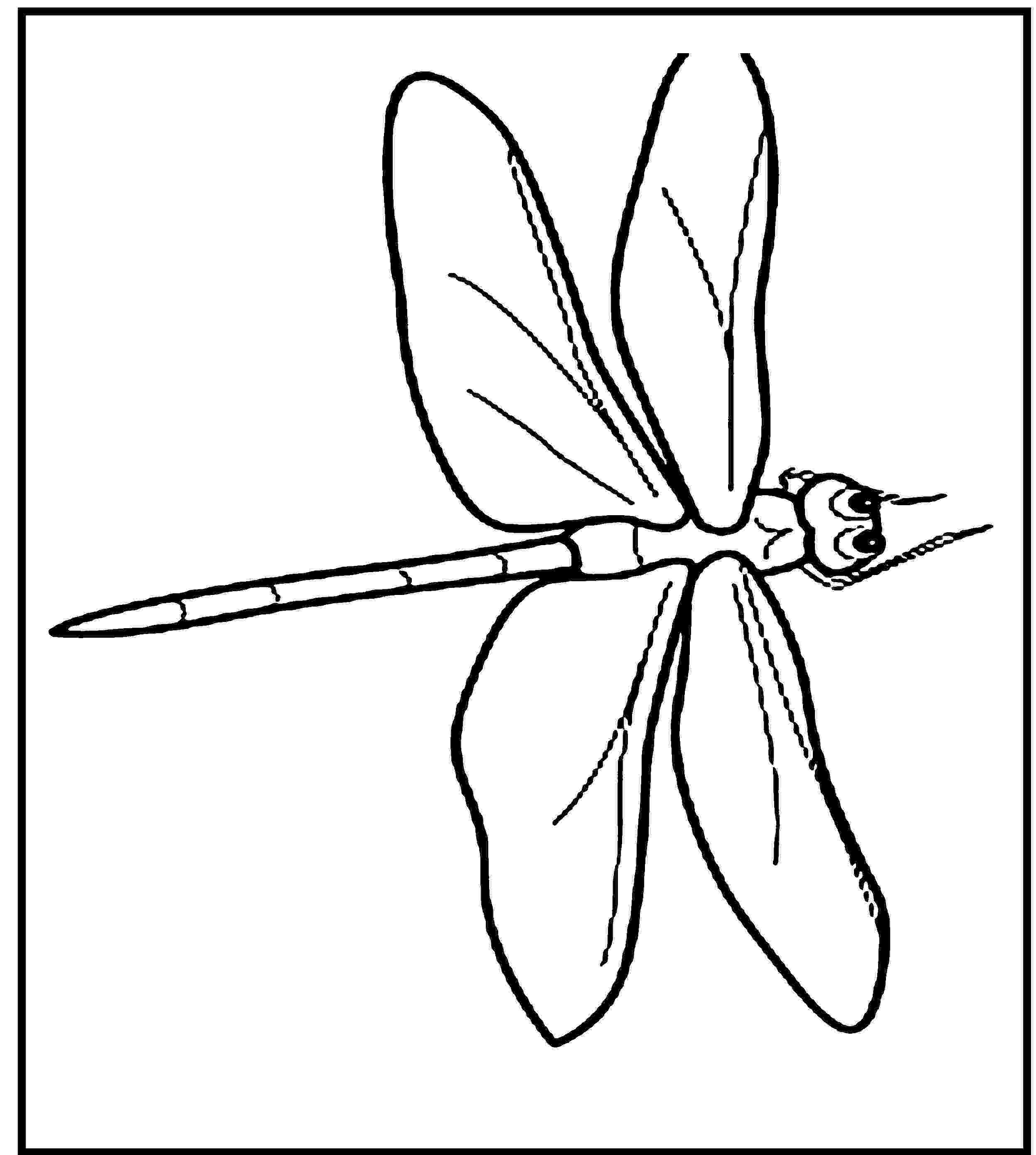 dragonfly coloring free printable dragonfly coloring pages for kids animal dragonfly coloring 1 1