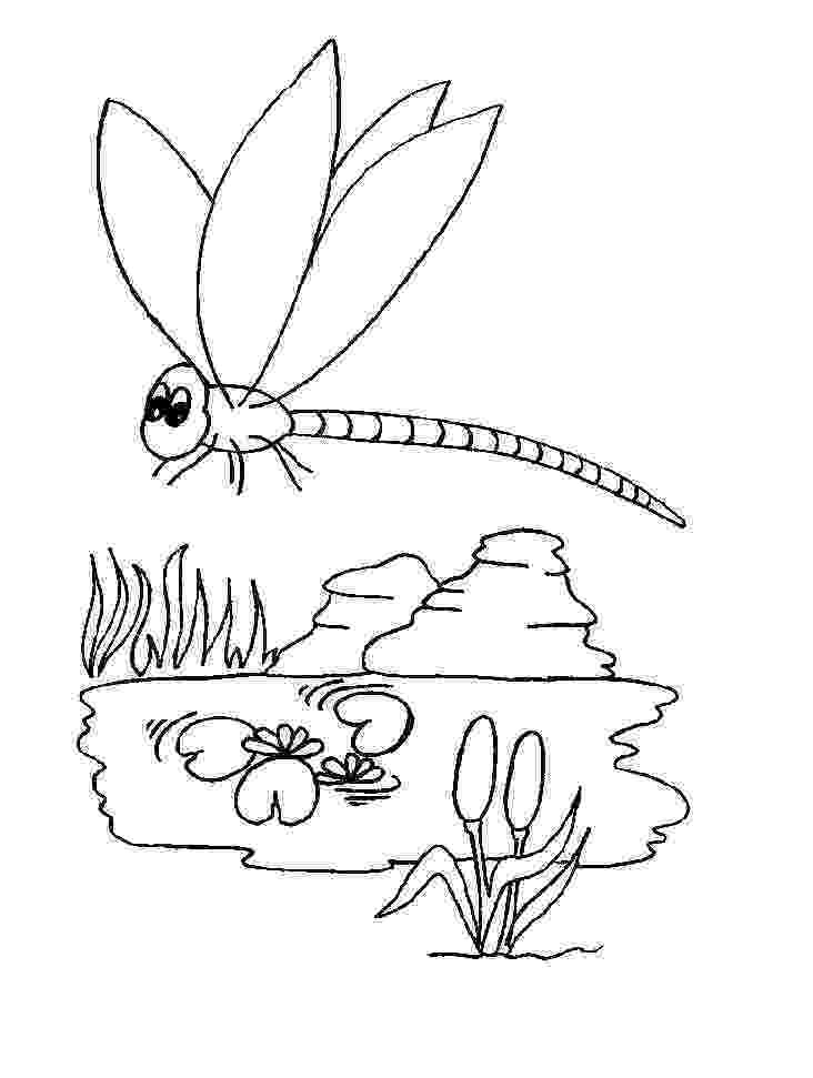 dragonfly coloring free printable dragonfly coloring pages for kids animal dragonfly coloring 1 3