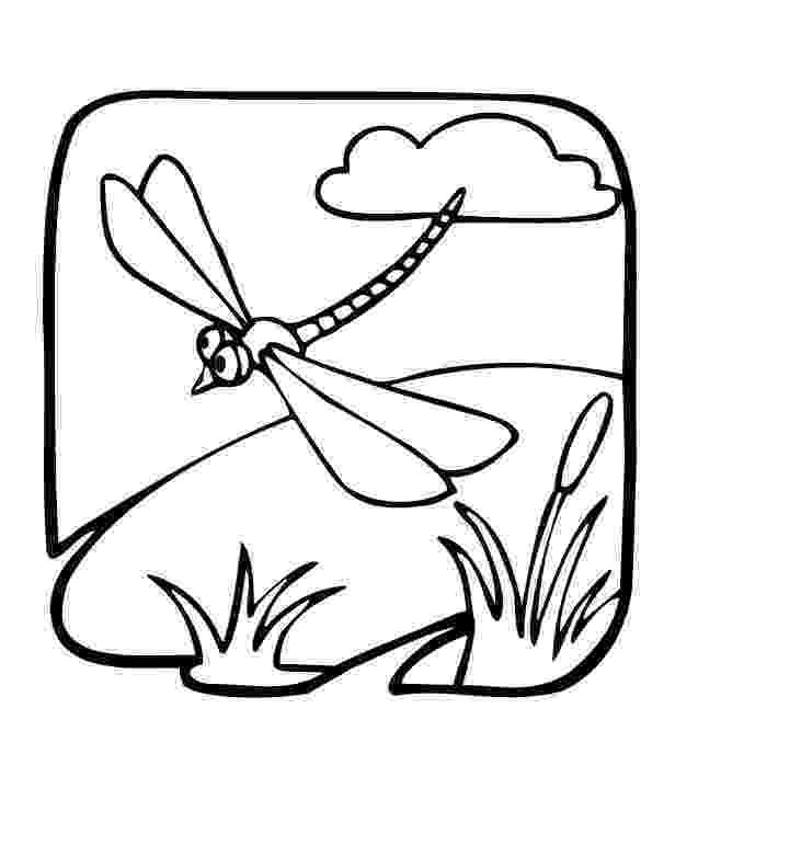 dragonfly coloring pin on painting drawing ideas coloring dragonfly
