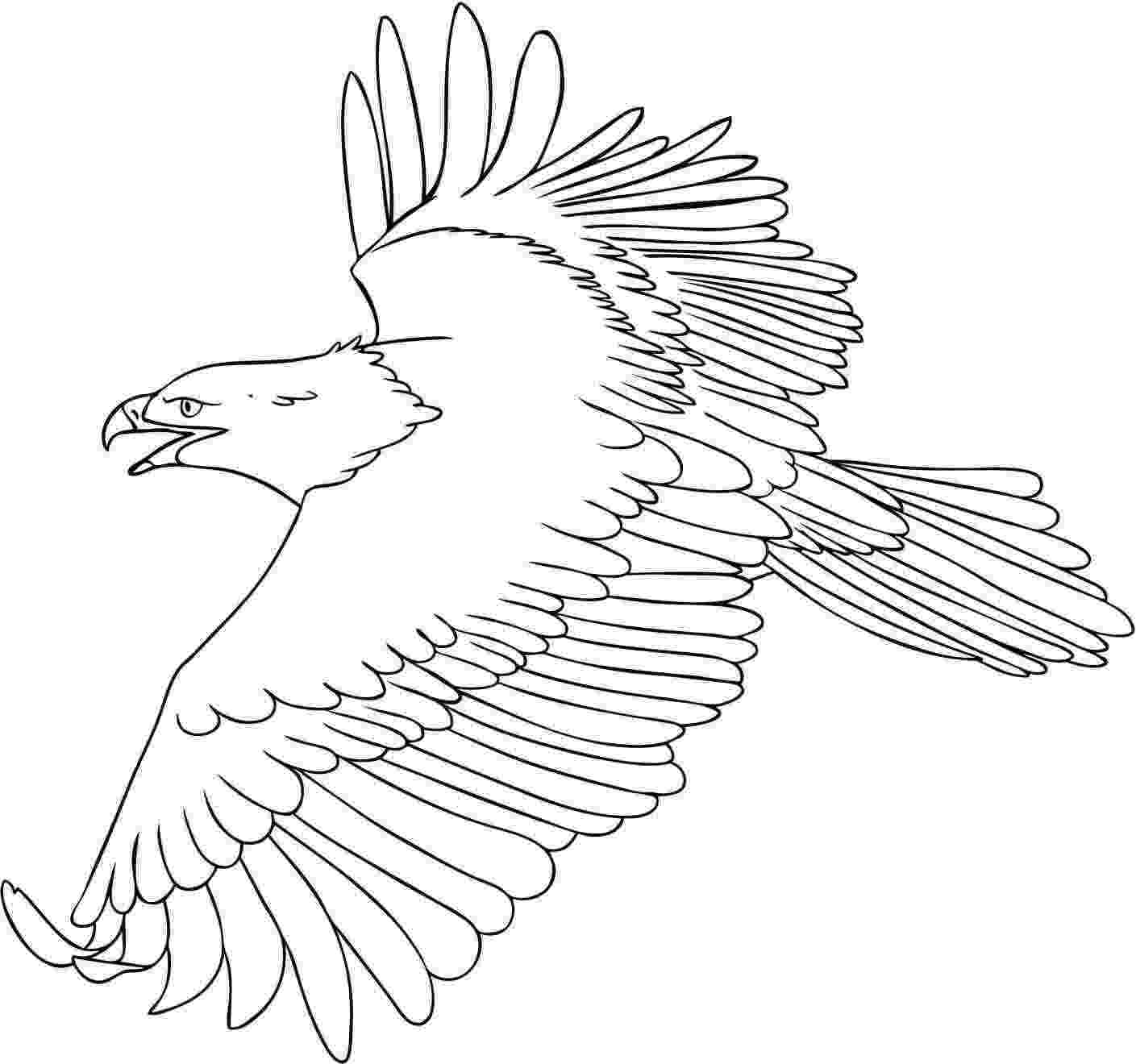 eagle pictures to color free printable bald eagle coloring pages for kids pictures eagle to color