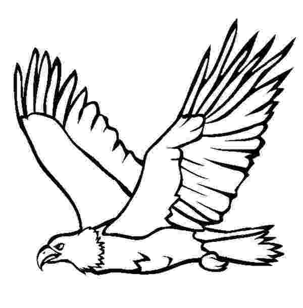 eagle pictures to color free printable eagle coloring pages for kids color to eagle pictures