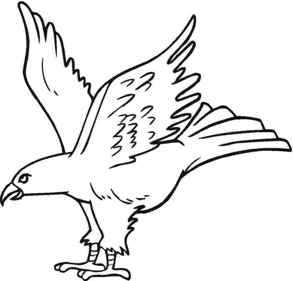 eagle pictures to color free printable eagle coloring pages for kids eagle pictures color to 1 1