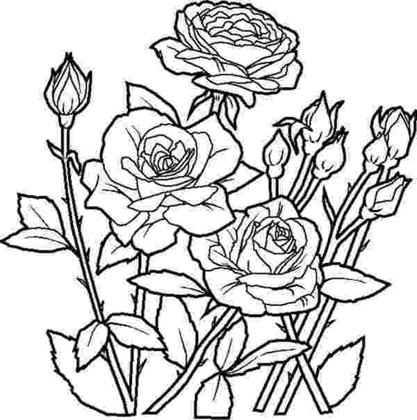 elegant coloring pages welcome to dover publicationscreative haven elegant angels elegant pages coloring