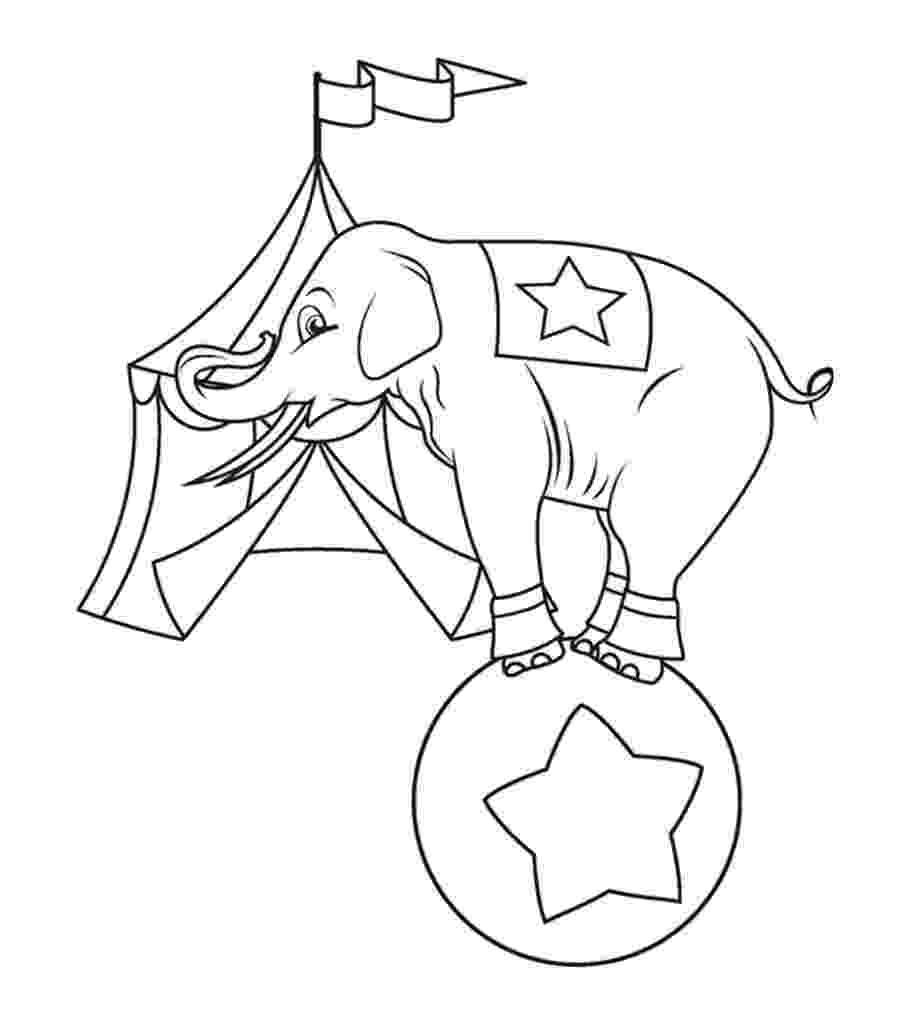 elephant color sheet print download teaching kids through elephant coloring sheet color elephant