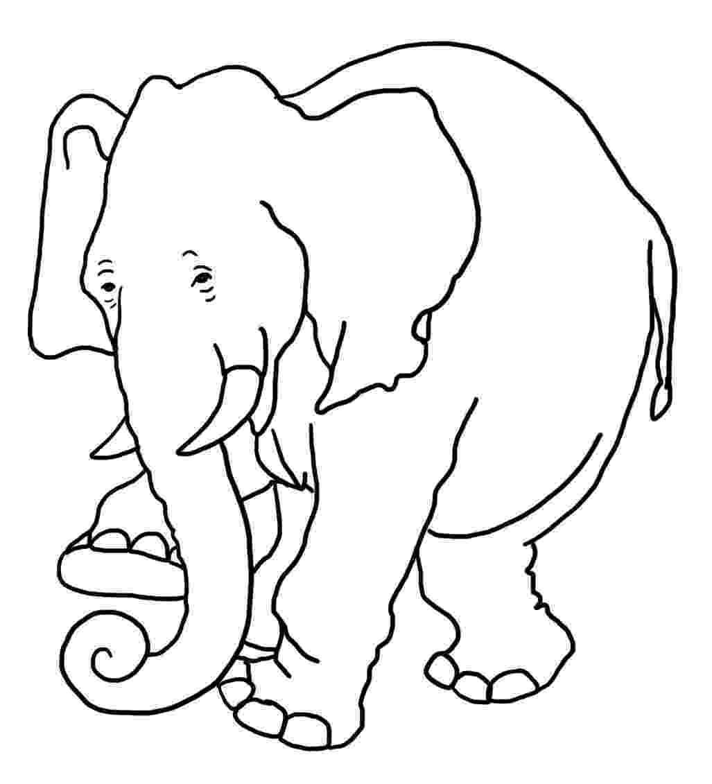 elephant coloring sheet coloring pages of elephants download and print for free coloring elephant sheet