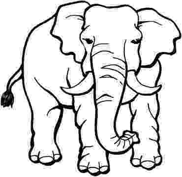 elephant coloring sheet print download teaching kids through elephant coloring coloring sheet elephant 1 1
