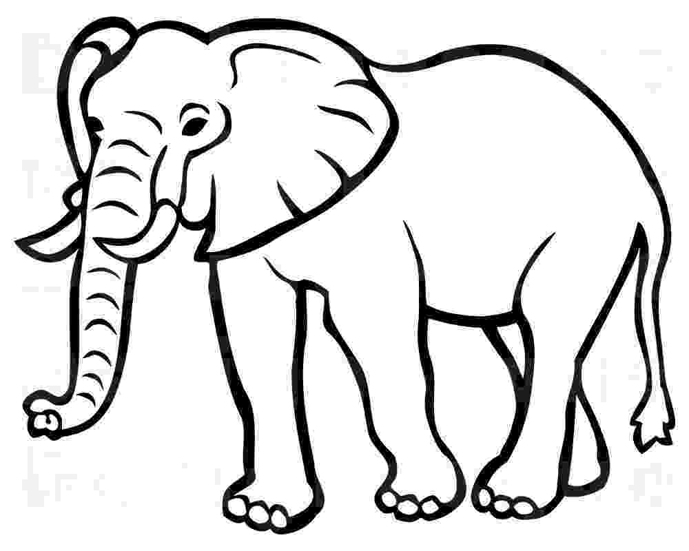 elephant images for colouring funny elephant coloring pages colouring for images elephant