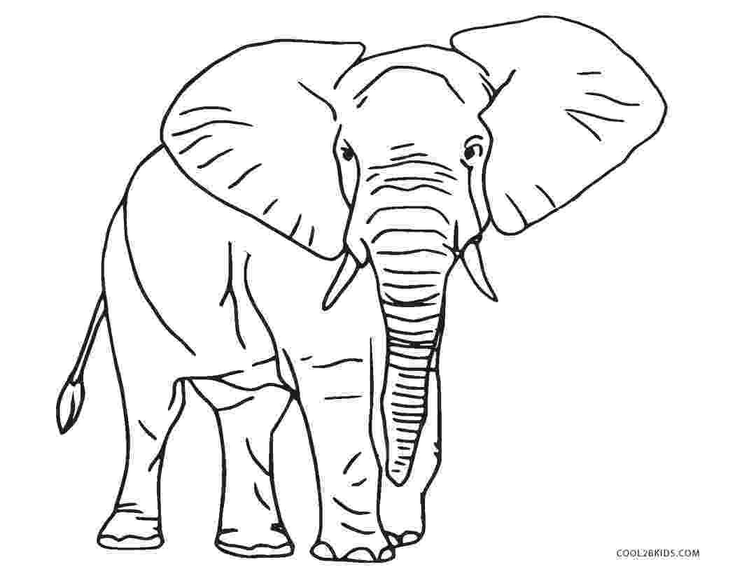 elephant pictures to color elephant coloring pages bestofcoloringcom pictures elephant to color