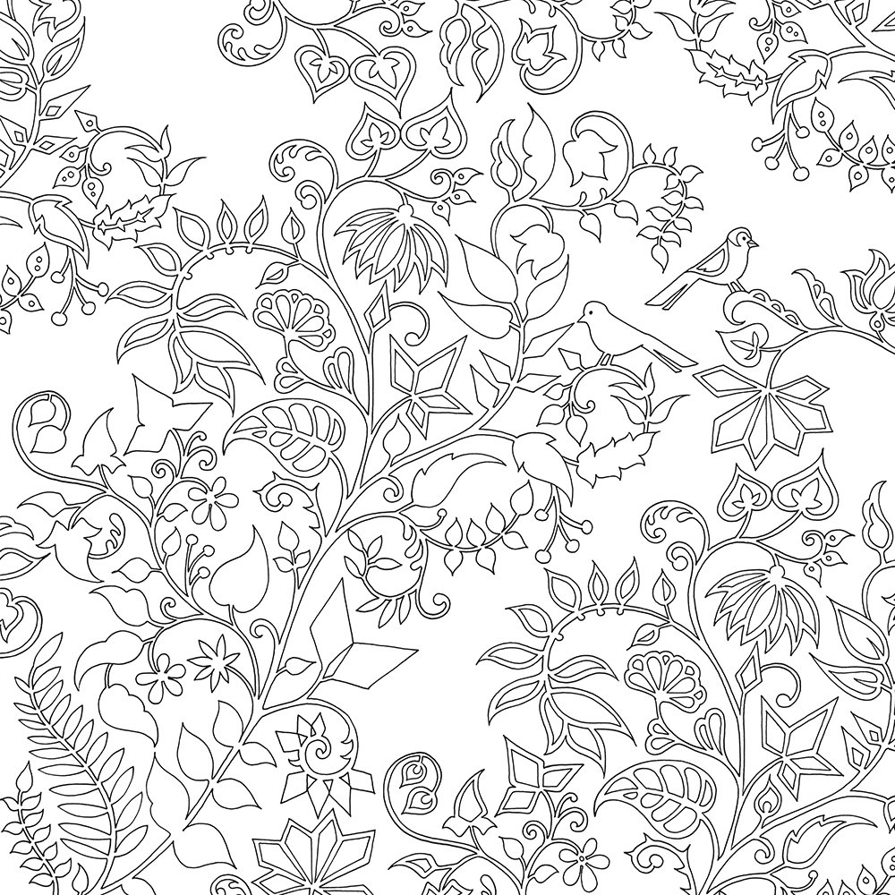 enchanted coloring pages chronicle books enchanted forest coloring book joann joann coloring pages enchanted