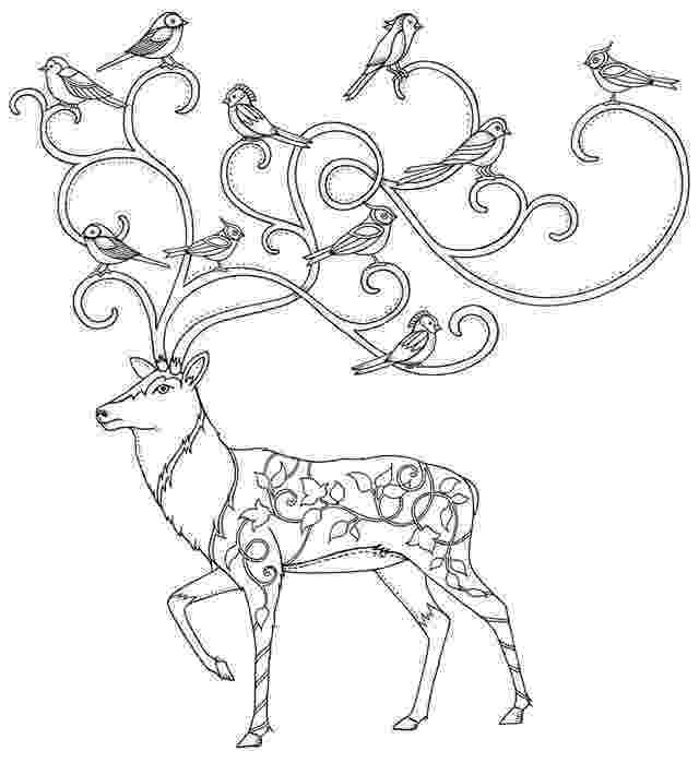 enchanted coloring pages enchanted forest coloring pages at getcoloringscom free enchanted pages coloring