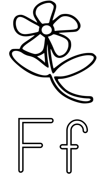 f is for flower f is for flower educationalphabetfisforflowerpnghtml for f flower is