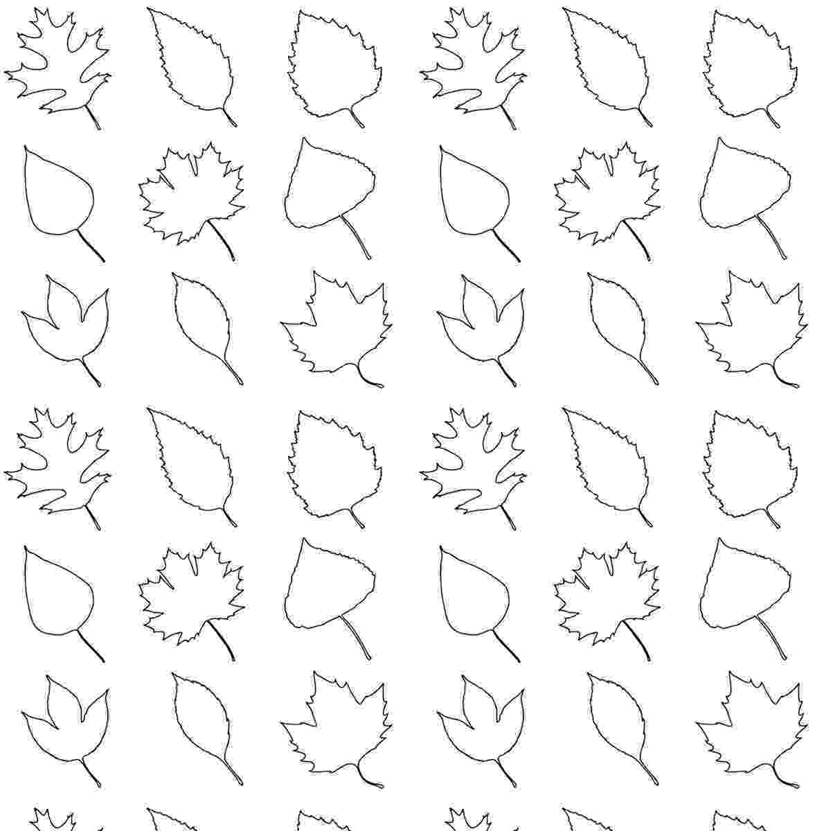 fall leaves print out free printable leaves coloring pattern paper print out leaves fall