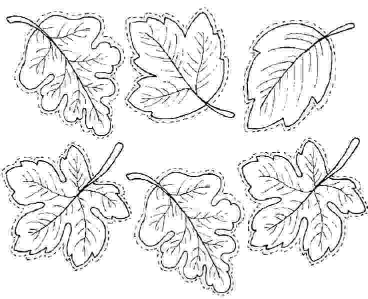 fall leaves print out leaves fallthanksgiving printables pinterest leaf print leaves fall out