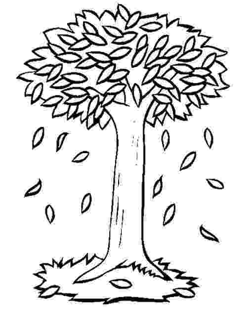 fall tree coloring pages autumn trees drawing at getdrawingscom free for coloring pages fall tree