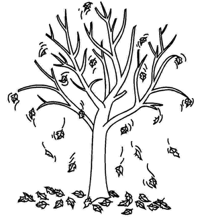 fall tree coloring pages fall coloring pages loving printable pages tree fall coloring