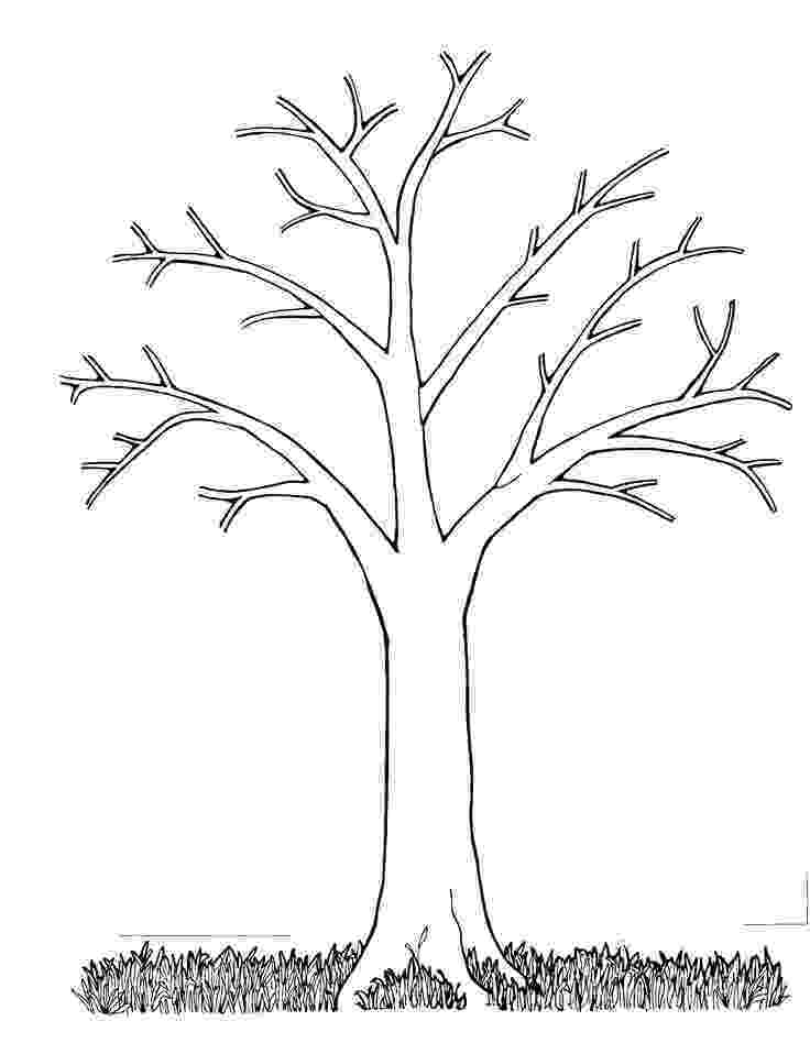 fall tree coloring pages free printable tree coloring pages for kids pages coloring fall tree