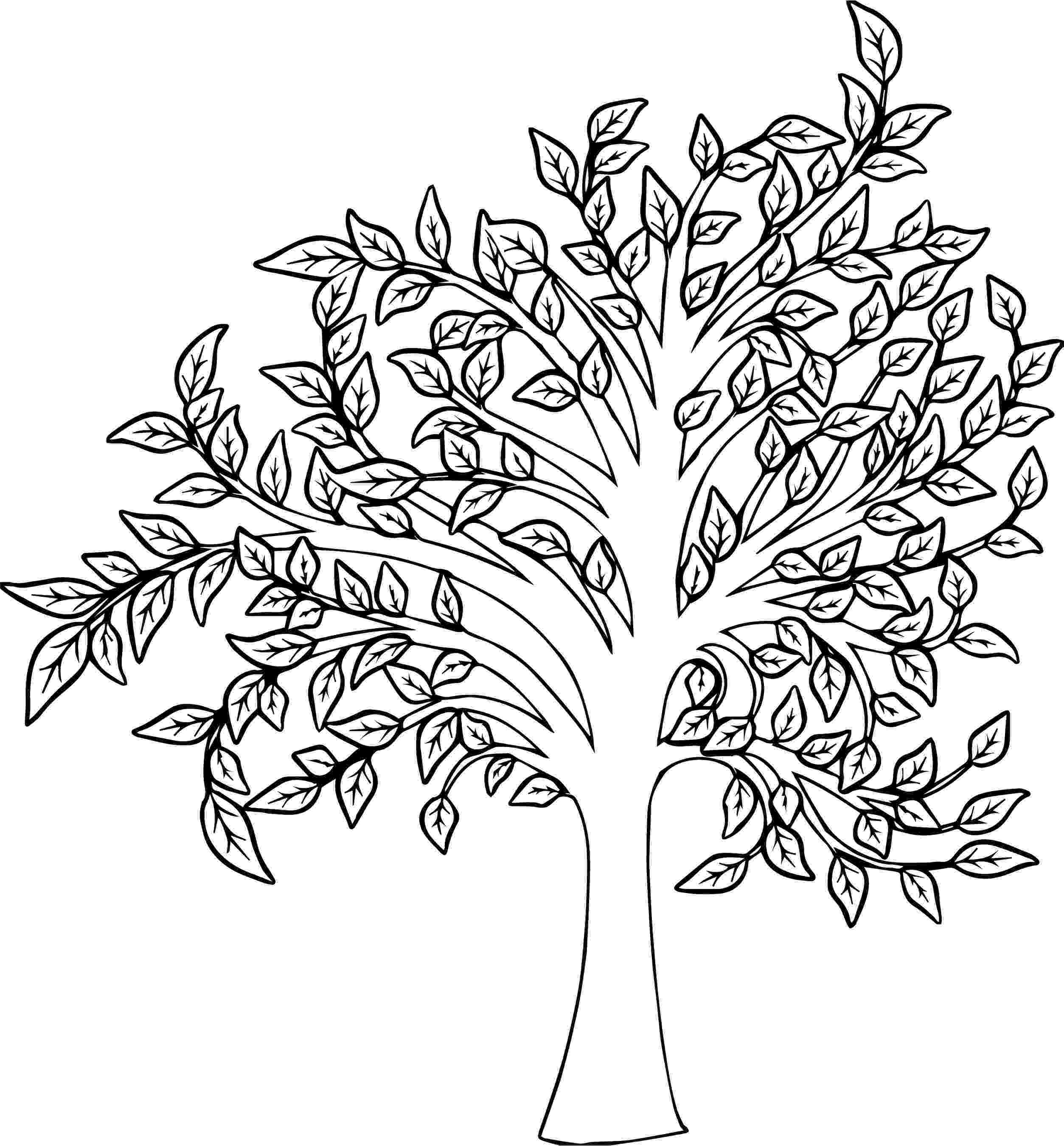 fall tree coloring pages mormon share tree bare black and white tree tree coloring tree fall pages