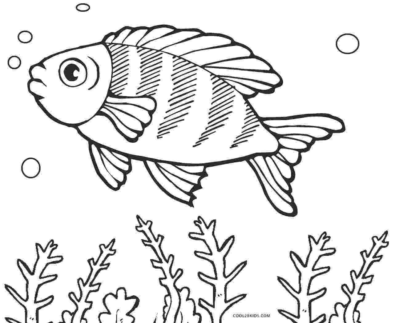 fish color page bass fish outline clipartioncom page color fish