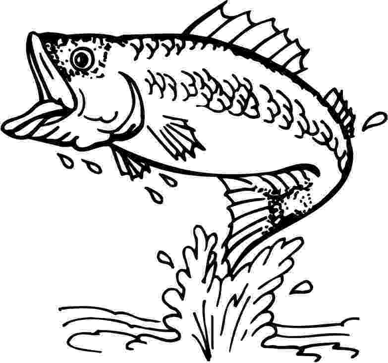 fish color page free printable fish coloring pages for kids cool2bkids color page fish