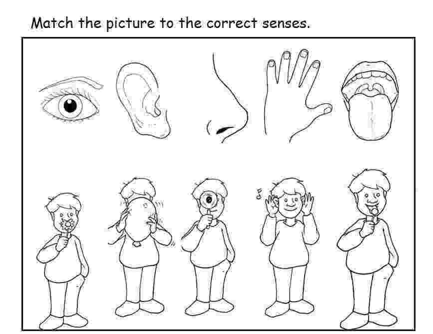 five senses coloring pages 5 senses coloring book sheet coloring pages pages five senses coloring