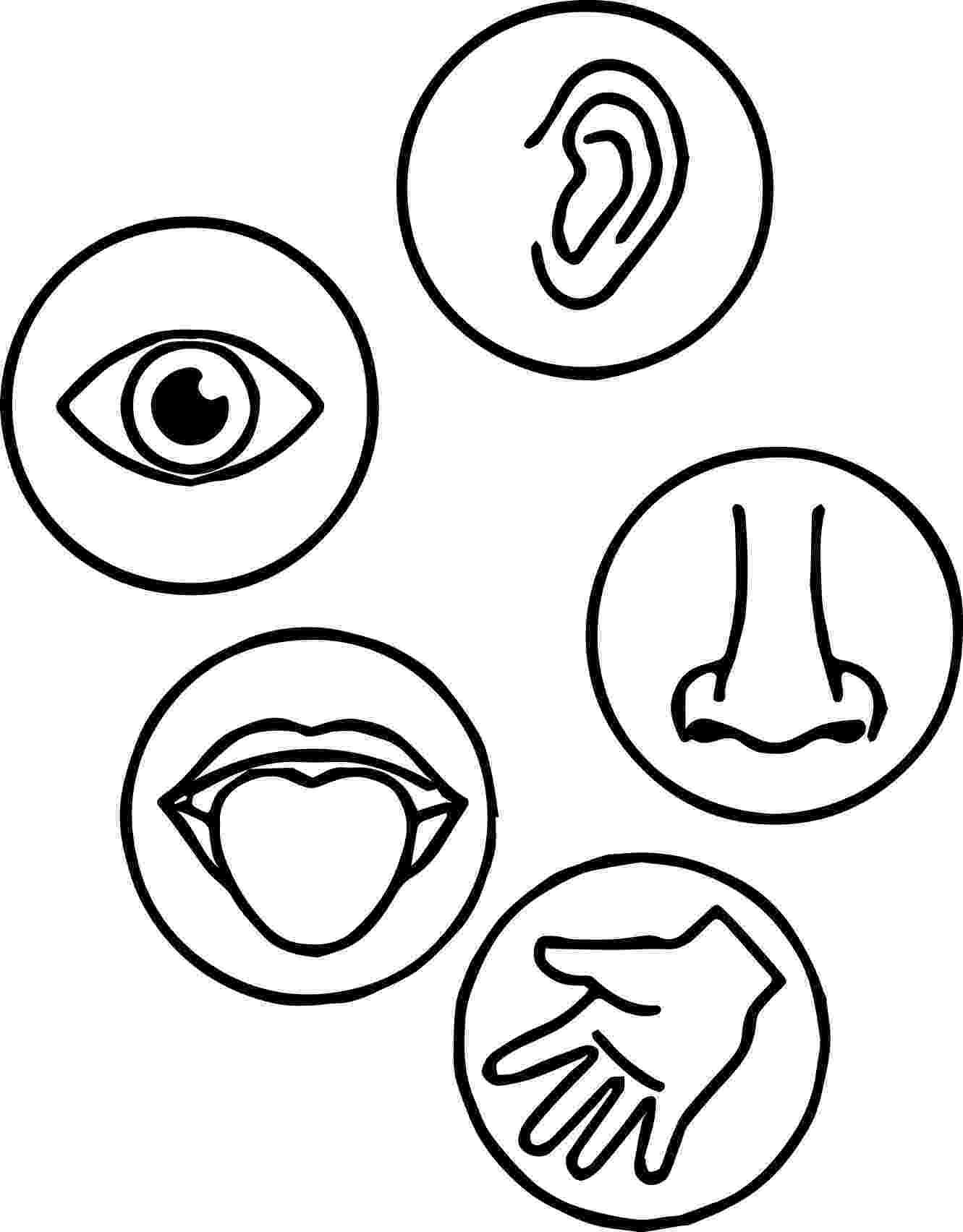 five senses coloring pages five senses coloring page wecoloring five coloring pages senses