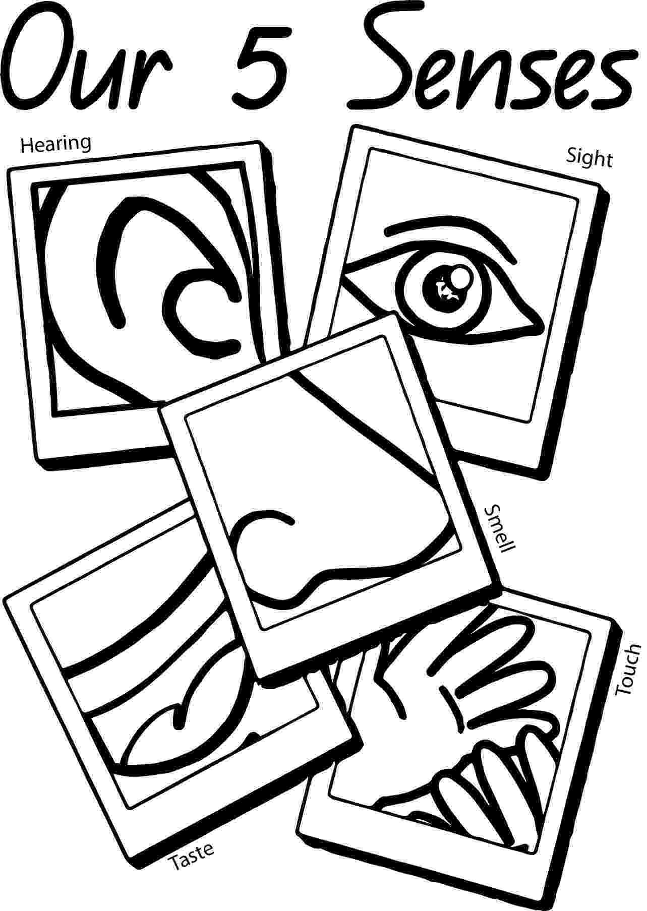 five senses coloring pages five senses coloring pages by kristen davis teachers pay five coloring senses pages