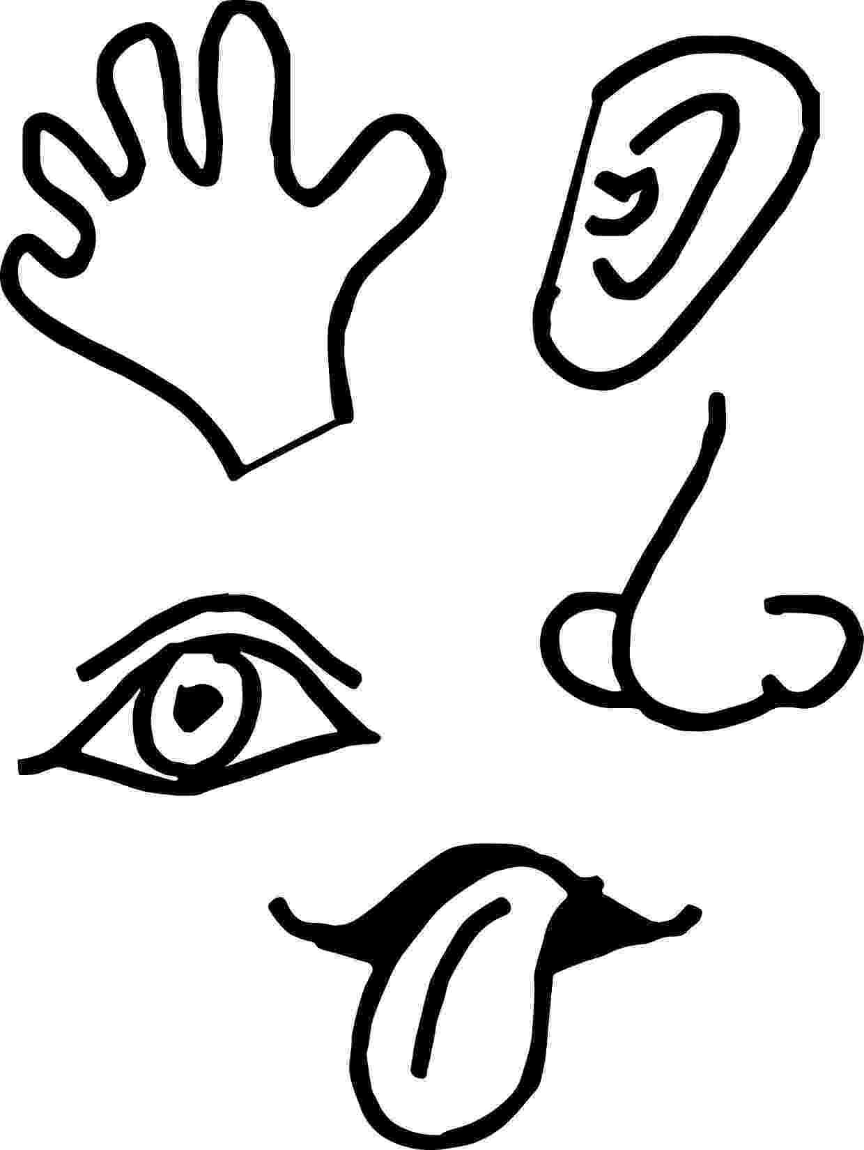 five senses coloring pages my five senses coloring pages free free coloring books five pages coloring senses