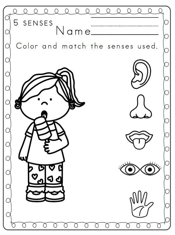 five senses coloring pages my five senses source coloring page wecoloringpagecom senses pages coloring five