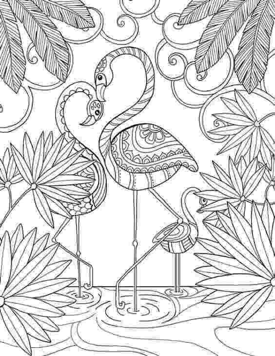 flamingo mandala beautiful doodle art of a flamingo bird coloring page for flamingo mandala