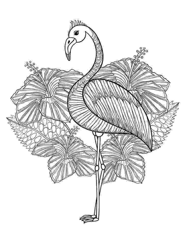 flamingo mandala flamingo clipart etsy studio flamingo mandala
