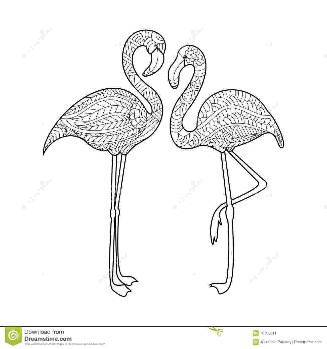 flamingo mandala flamingo coloring book for adults vector stock vector flamingo mandala