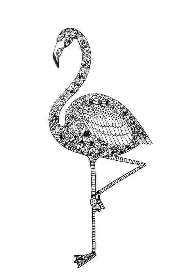 flamingo mandala mélanie chevallier graphisme dessin graphisme et timée flamingo mandala
