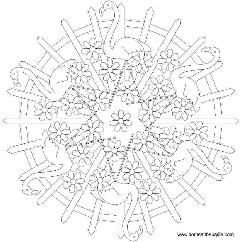 flamingo mandala stock photo flamingo coloring page mandala coloring mandala flamingo