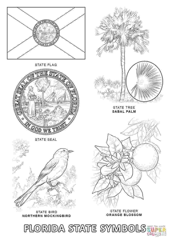 florida flag coloring page seals coloring pages download coloring for kids 2019 coloring flag page florida