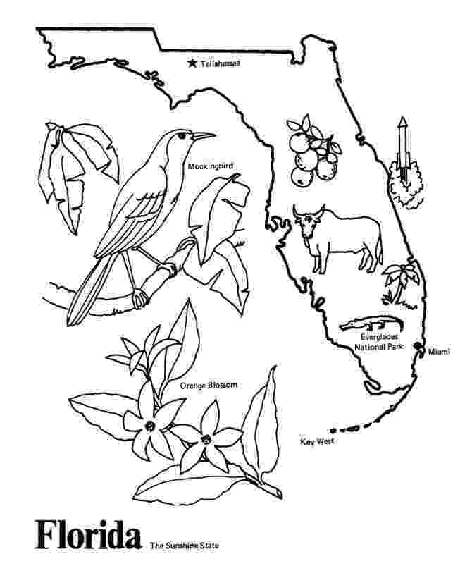 florida state symbols coloring pages florida state outline coloring page i copy the image and coloring symbols state florida pages