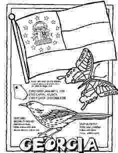 florida state symbols coloring pages florida state symbols coloring page free printable state coloring florida symbols pages 1 1