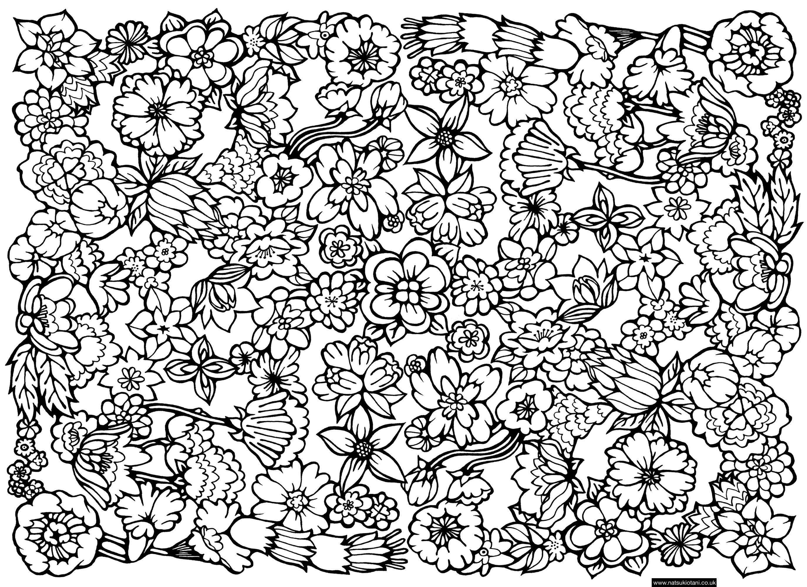 flower coloring patterns free printable flower coloring pages for kids best coloring patterns flower