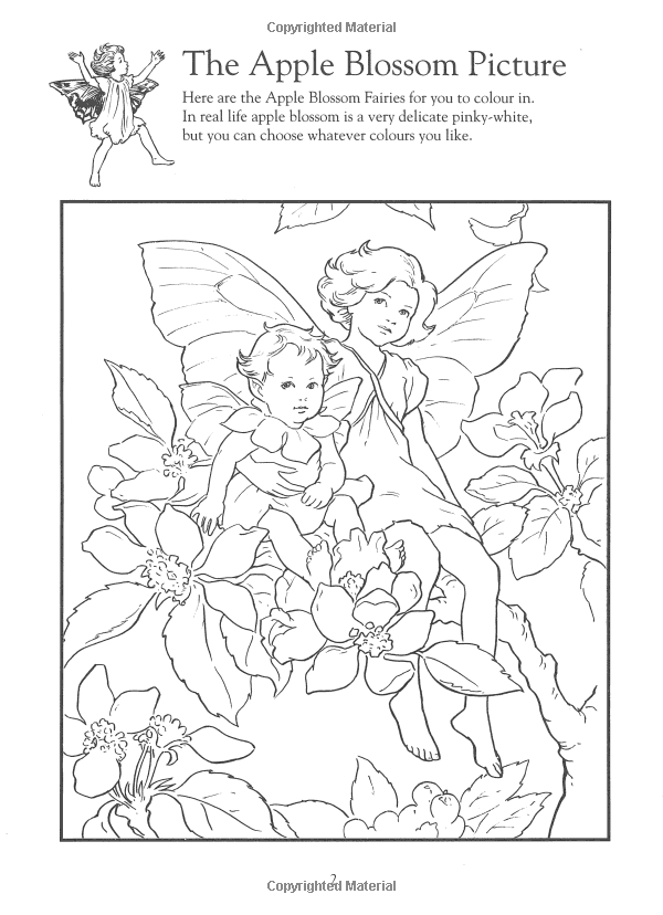 flower fairies colouring sheets flower fairies activity book based on the original flower fairies sheets flower colouring
