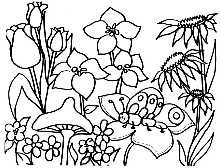 flower garden colouring picture gardening coloring pages to download and print for free colouring picture flower garden